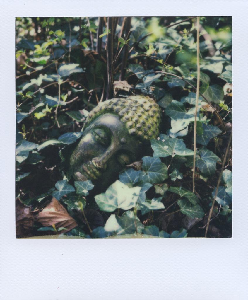 170402-Polaroid-003.jpg