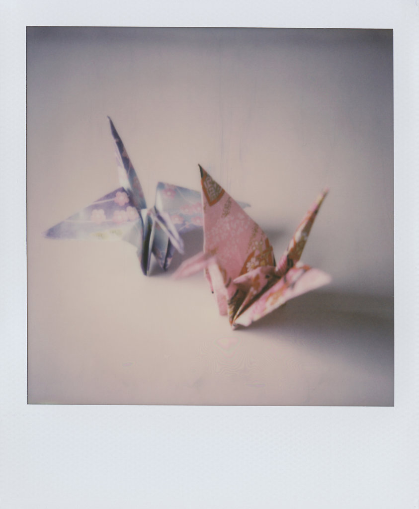 170814-Polaroid-003.jpg